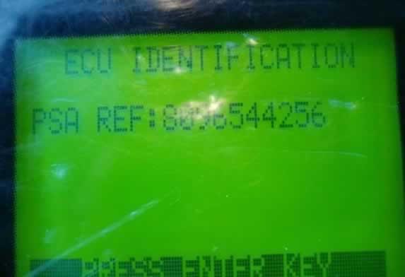 T300 program Peugeot 307 key 9-9